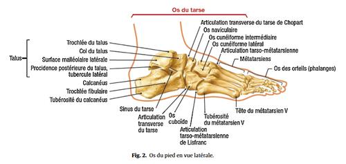 Douleur sous le pied : 5 causes possibles